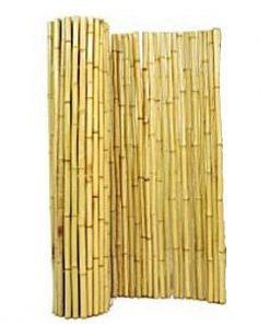 במבוק מושחל גדר