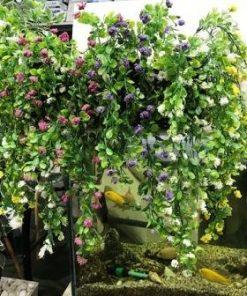 צמחיה נשפכת פרחים
